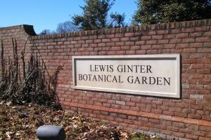 Brick Power washing at Lewis Ginter Botanical Gardens in Richmond VA